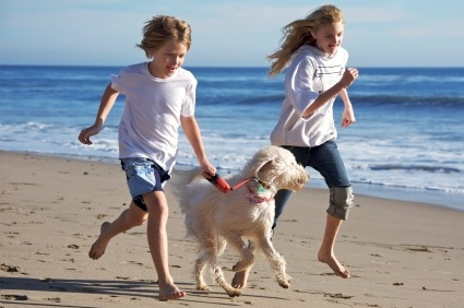 children exercising with dog