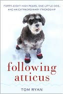 following atticus book