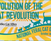 National Feral Cat Day® – Evolution of the Cat Revolution