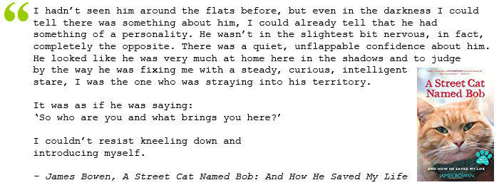 quote from A Street Cat Named Bob: And How He Saved My Life