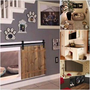 collage of dog home customization examples