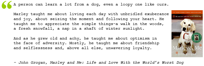dog quote from marley and me