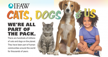 IFAW cats dogs and us educational poster