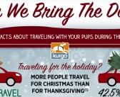 Happy Holidays & Safe Travel