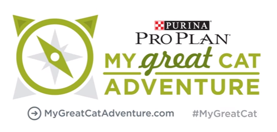 my great cat adventure banner
