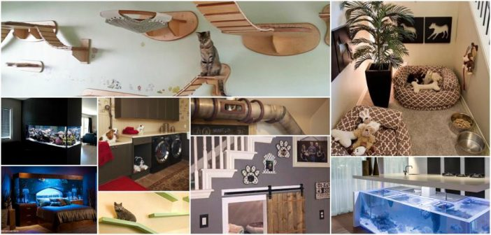 Pet-Inspired Home Customizations