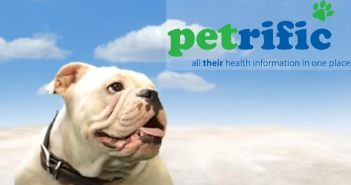 petrific video screenshot and logo