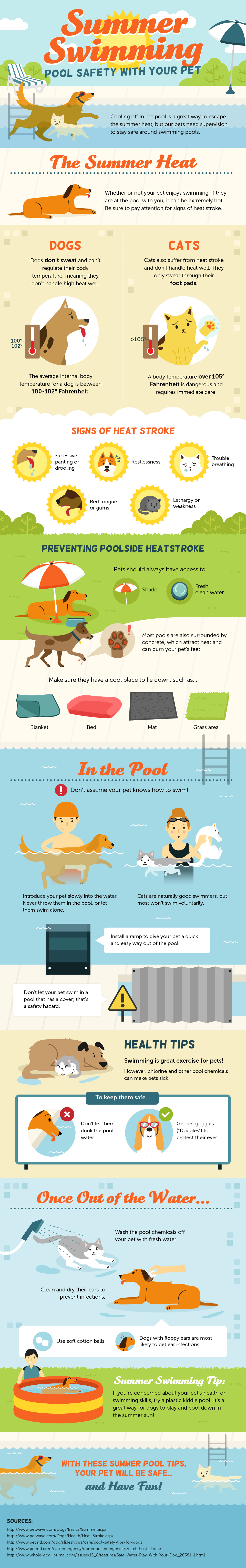 pets and swimming pool safety tips infographic