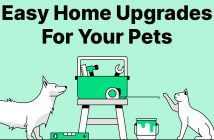 easy home upgrades for your pets banner