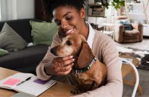 How To Successfully Work from Home with a Dog