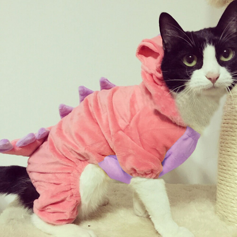 black and white cat in a cute pink dinosaur costume