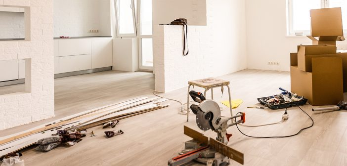 How To Keep Pets Safe During Home Improvement Projects