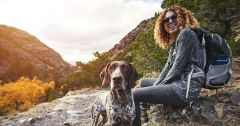 Top Tips for Hiking With Your Dog This Summer