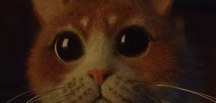 The First-Ever Horror Movie For Cats Premieres Friday