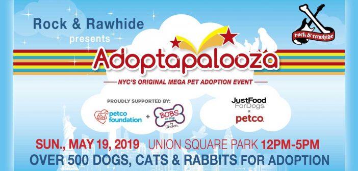 adoptapalooza banner