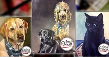 sample of dog and cat paintaings from animal house portraits