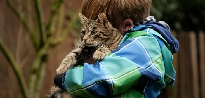 little boy hugging his cat