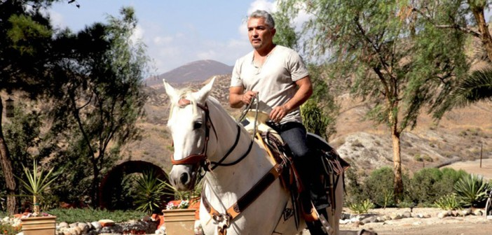 cesar millan the real story