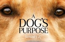 A Dog's Purpose Cover Art