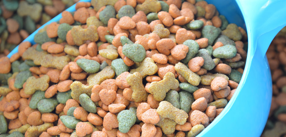 Top 5 Healthy Dog Food Brands - PetsBlogs