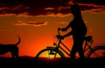 person with dog and bike silhouetted at sunset