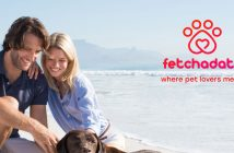fetchadate couple with their dog
