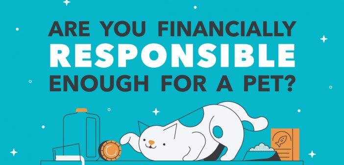 graphic are you financially responsible enough for a pet?