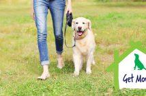 woman walking her large dog