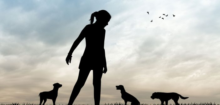 girl and 3 dogs outside silhouetted against a blue sky