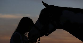 a girl and her horse silhouetted at dusk