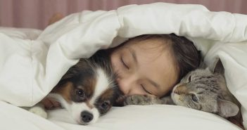 girl sleeping in bed with per pets