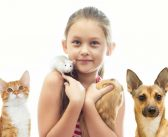 The Zen of Furry Friends: Finding the Pet That's Right for You