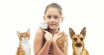 girl with various pets including a dog, a cat, a mouse and a guinea pig