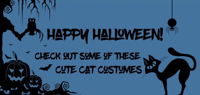 happy halloween cat costumes silhouette