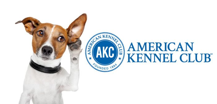 dog listening akc logo