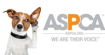 dog listening to a tin can with the aspca logo