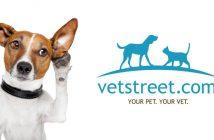 dog listening vetstreet logo