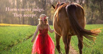little girl leading her horse