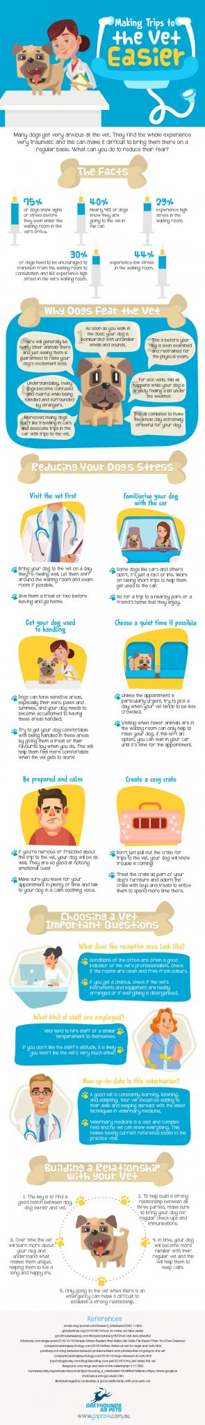 infographic with statistics and helpful advice for taking dogs to the vet