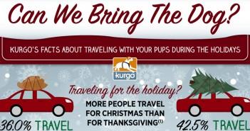 Kurgo holiday travel infographic header