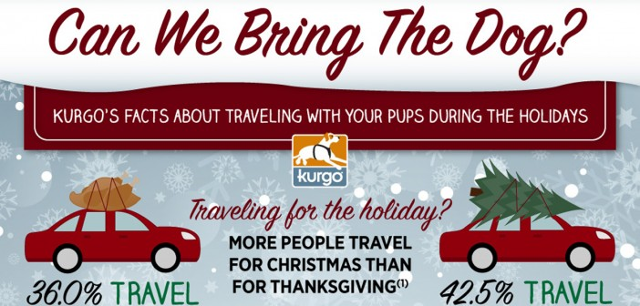 Kurgo holiday travel infographic header