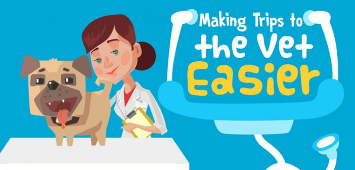 How To Make Trips To The Vet Easier (Infographic)