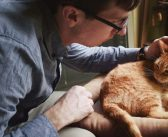 Is Homeopathy Safe for Pets?