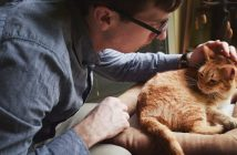 a man caring for his orange tabby cat at home