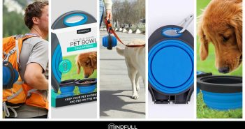 double sided collapsible pet bowls
