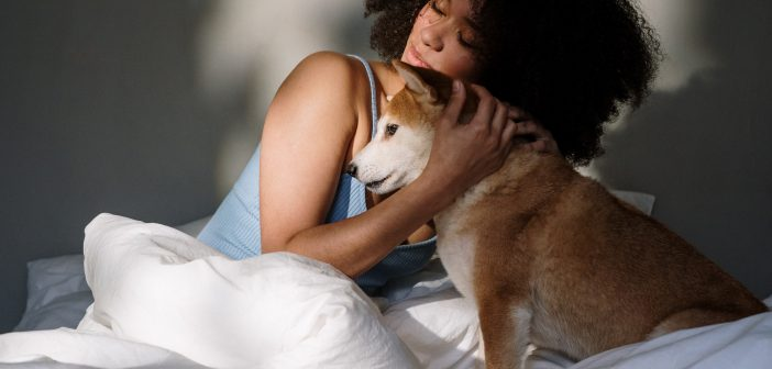 How to Care for Your Pets When You're Sick or Injured