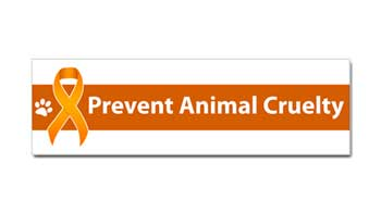prevent animal cruelty car magnet bumper sticker