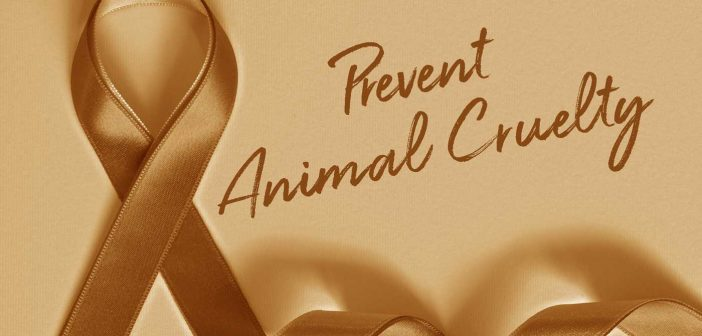 orange ribbon prevent animal cruelty banner