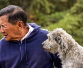 Senior Pets: How To Help Your Beloved Animal Thrive