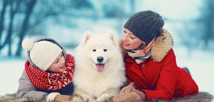 mother and son with white Samoyed dog in winter
